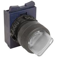 CSW Illuminated Switches